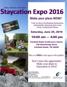 Staycation Expo 2016 flyer